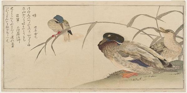 """""""Il sogno di Hokusai"""" di Ilaria Demonti edito in occasione della mostra milanese """"Hokusai Hiroshige Utamaro"""""""