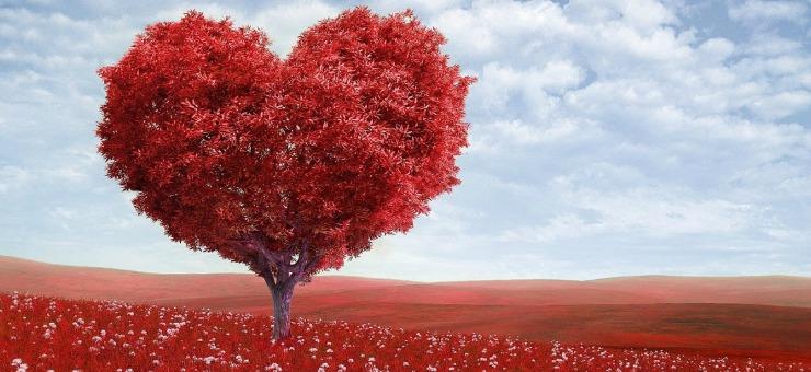 Amore Platonico Che Significa E Perché Si Dice Così